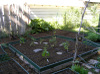 Garden_2006